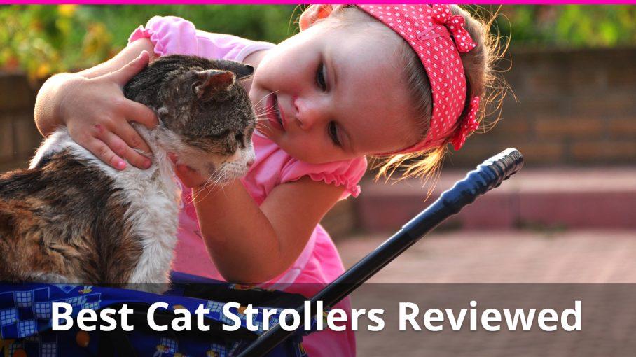best cat strollers reviewed