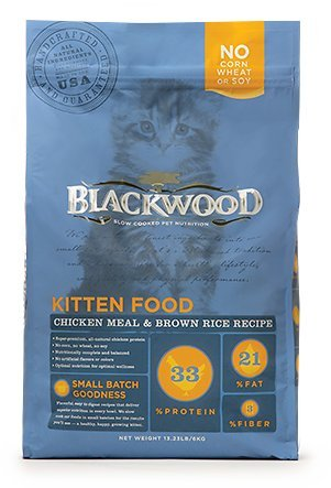 blackwood cheap kitten food