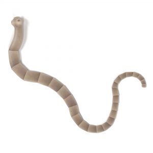 realistic 3d render of tapeworm in cats
