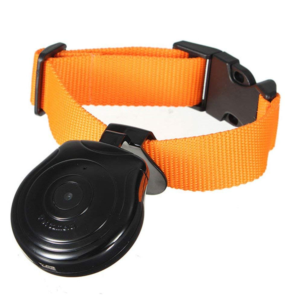 digital pet collar camera for cats