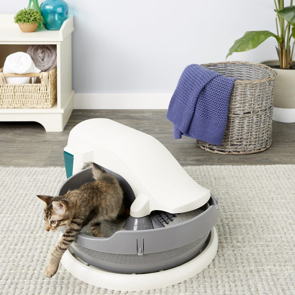 petsafe simply clean with cat in cat box