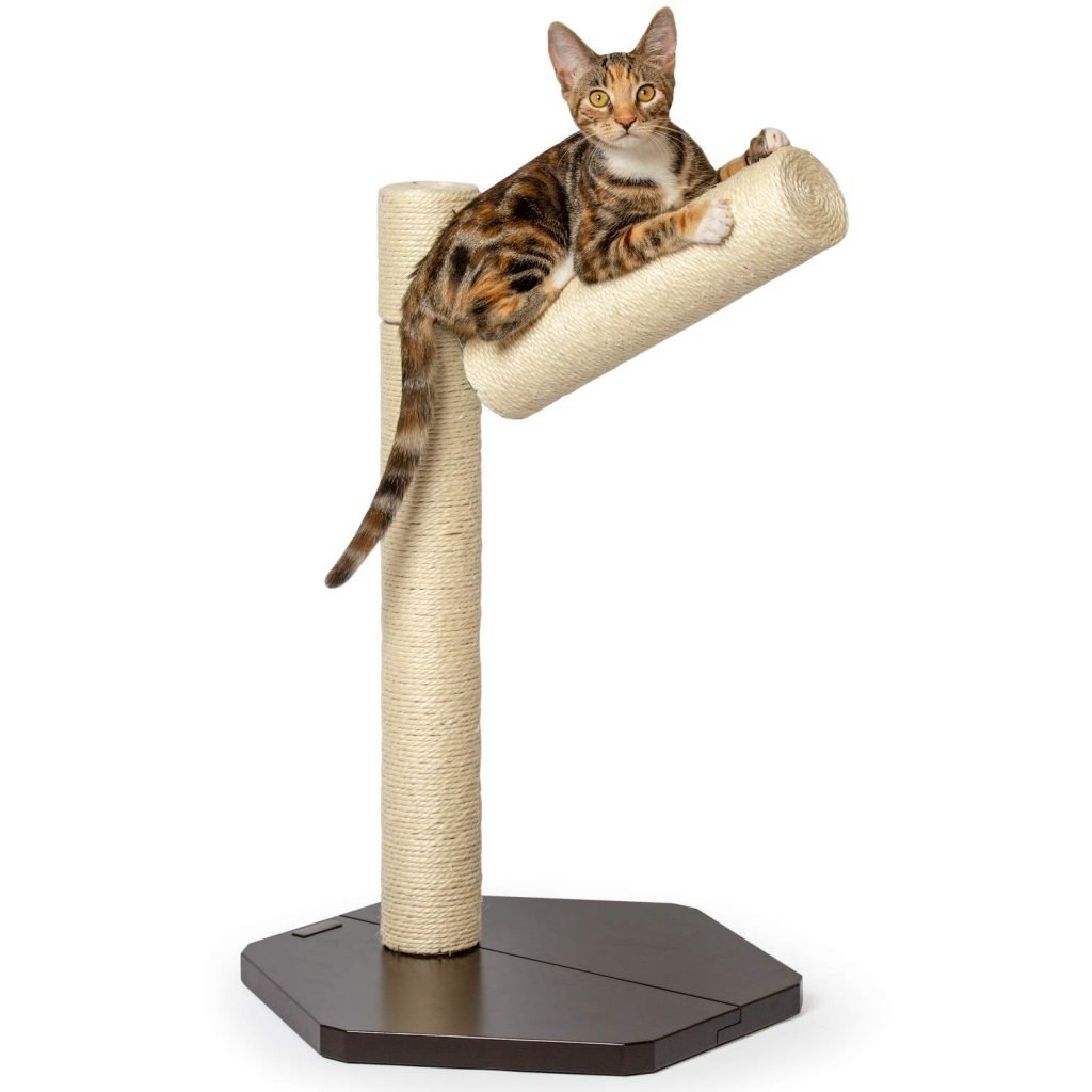 PetFusion Branch-Out Cat Scratching Post