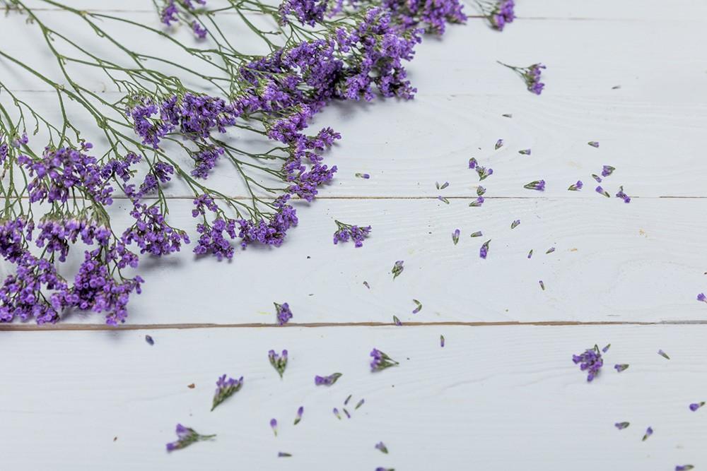 lavender for natural flea treatments