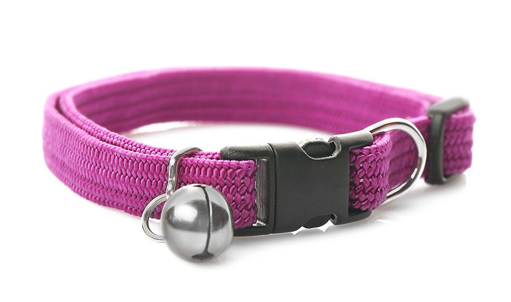 soft cat collar for natural flea treatments